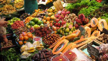 Permalink zu:Ernährung